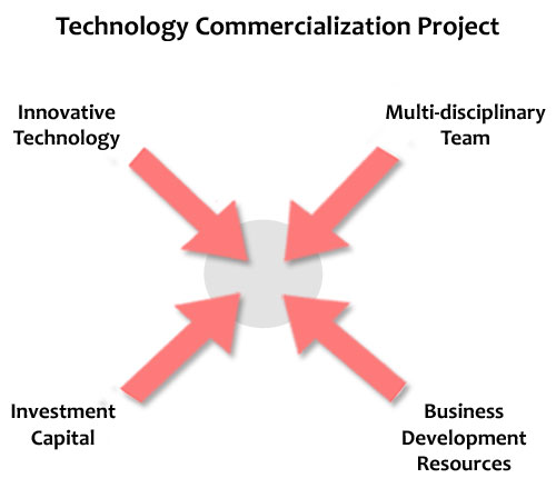 Technology Commercialization Project description